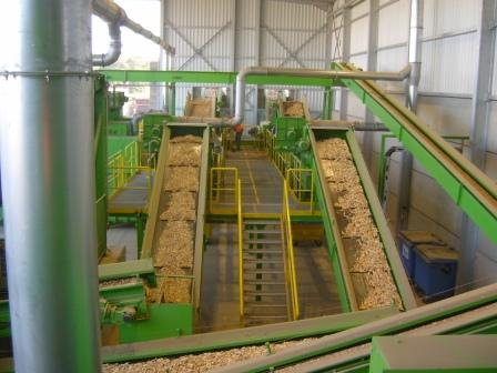 Waste wood processing